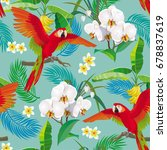 tropical pattern with red... | Shutterstock . vector #678837619