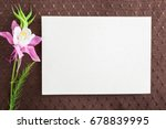 white blank greeting card with... | Shutterstock . vector #678839995