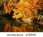 Autumn glory with reflection in water - stock photo