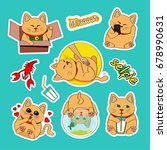 fashion patch badges with cat ... | Shutterstock . vector #678990631