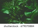 green background concepts... | Shutterstock . vector #679070884