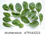 fresh baby spinach leaves on... | Shutterstock . vector #679163221
