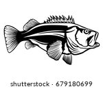fishing logo. rock bass fish... | Shutterstock .eps vector #679180699