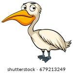 pelican bird on white... | Shutterstock .eps vector #679213249