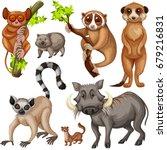 different types of wild animals ... | Shutterstock .eps vector #679216831