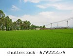 rice paddy in the farm .... | Shutterstock . vector #679225579