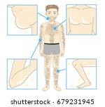 men's beauty depilation   whole ... | Shutterstock .eps vector #679231945