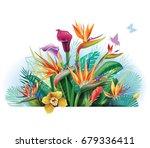 tropical arrangement with... | Shutterstock . vector #679336411