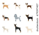 vector illustration of dog... | Shutterstock .eps vector #679397407