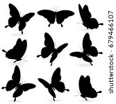 Black Butterfly  Isolated On A...