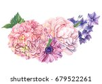 bouquet of pink hydrangeas ... | Shutterstock . vector #679522261