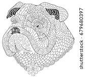 bulldog doodle coloring book.... | Shutterstock .eps vector #679680397