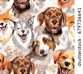 exotic dog wild animal pattern... | Shutterstock . vector #679736641