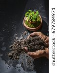 handle soil and plant green... | Shutterstock . vector #679784971