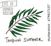 tropical leaves for summer... | Shutterstock .eps vector #679817137