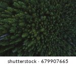 Trees From Top View
