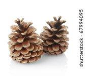 Pine Cones Isolated On White ...
