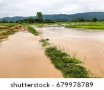 agriculture rice field flooded... | Shutterstock . vector #679978789