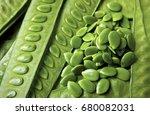 green popinac seeds with... | Shutterstock . vector #680082031