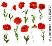 poppy flowers icons set. vector ... | Shutterstock .eps vector #680102524