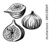 hand drawn illustration of figs....   Shutterstock . vector #680128069