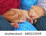 new born baby cat sleeping.... | Shutterstock . vector #680215549