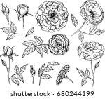 set of elements. vector...   Shutterstock .eps vector #680244199