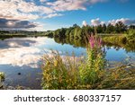 Wildflowers At Branton Lakes  ...