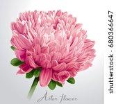 luxurious pink vector aster... | Shutterstock .eps vector #680366647