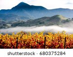 Mount St. Helena and Fall Vineyards