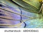 wings of butterflies at high... | Shutterstock . vector #680430661