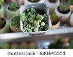close up rectangular... | Shutterstock . vector #680645551