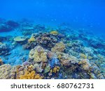 coral panorama in tropical... | Shutterstock . vector #680762731