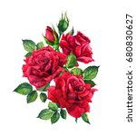 Stock photo red roses watercolor sketch 680830627