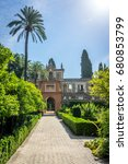 Small photo of Tall palm tree in the alcazar garden in Seville, Spain, Europe