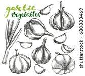 garlic vegetable set hand drawn ...   Shutterstock .eps vector #680883469