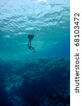 the freediver moves underwater... | Shutterstock . vector #68103472