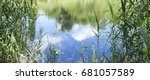 bank of the river with reeds | Shutterstock . vector #681057589