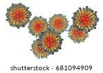 measles viruses isolated on...   Shutterstock . vector #681094909