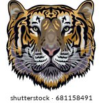 tiger face | Shutterstock .eps vector #681158491