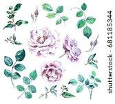 set of floral design watercolor ... | Shutterstock . vector #681185344