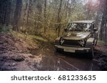 leningrad region  russia  may... | Shutterstock . vector #681233635
