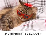 cat in red glasses and red hat...