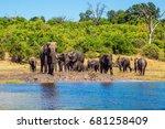 watering in the okavango delta.... | Shutterstock . vector #681258409