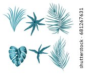 tropical blue leaves of palm... | Shutterstock .eps vector #681267631