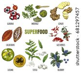 superfood set. full color... | Shutterstock .eps vector #681297457