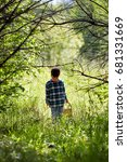 child in the forest solar... | Shutterstock . vector #681331669