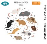 mice breeds icon set flat style ... | Shutterstock .eps vector #681450811