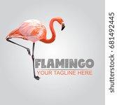 vector pink flamingo... | Shutterstock .eps vector #681492445