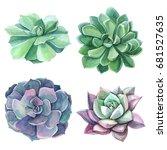 clipart watercolor succulents    Shutterstock . vector #681527635
